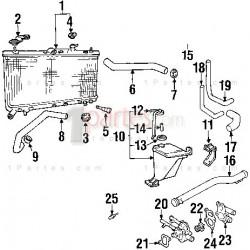 Base del termostato (toma de agua)